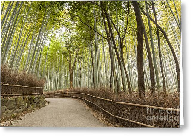 Recently Sold -  - Bamboo Fence Greeting Cards - Bamboo Forest Arashiyama Kyoto Japan Greeting Card by Colin and Linda McKie