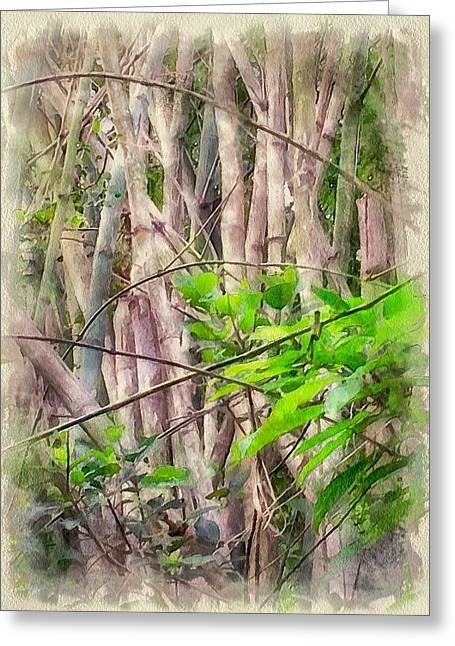 Bamboo House Greeting Cards - Bamboo forest at Lamma island Hong Kong Greeting Card by Yury Malkov