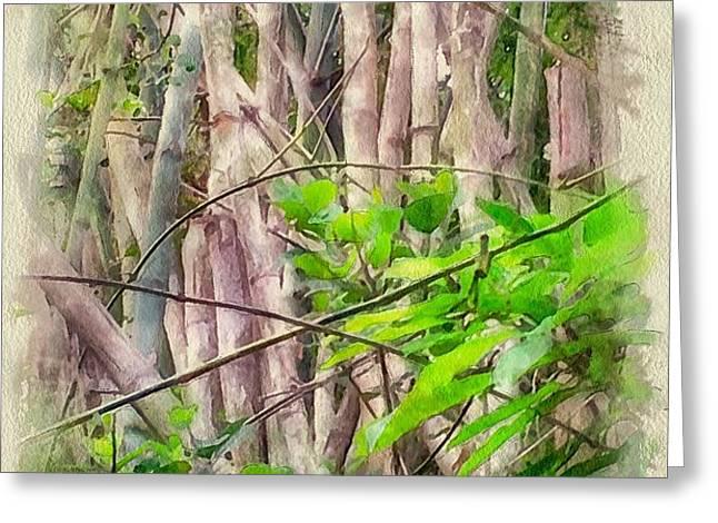Bamboo forest at Lamma island Hong Kong Greeting Card by Yury Malkov