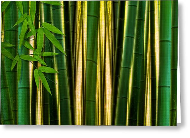Green Artworks Greeting Cards - Bamboo Forest- Bamboo Artwork Greeting Card by Lourry Legarde