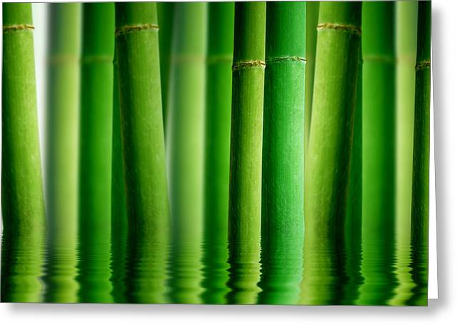 Bamboo Forest With Water Reflection Greeting Card by Aged Pixel