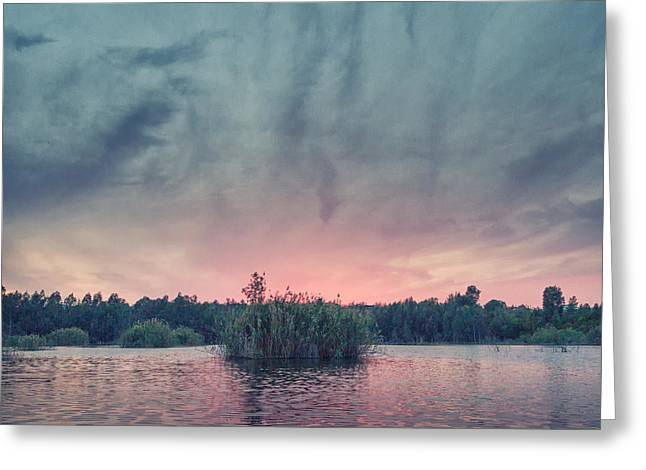 Twilight Views Greeting Cards - Bamboo Lake Greeting Card by Stylianos Kleanthous
