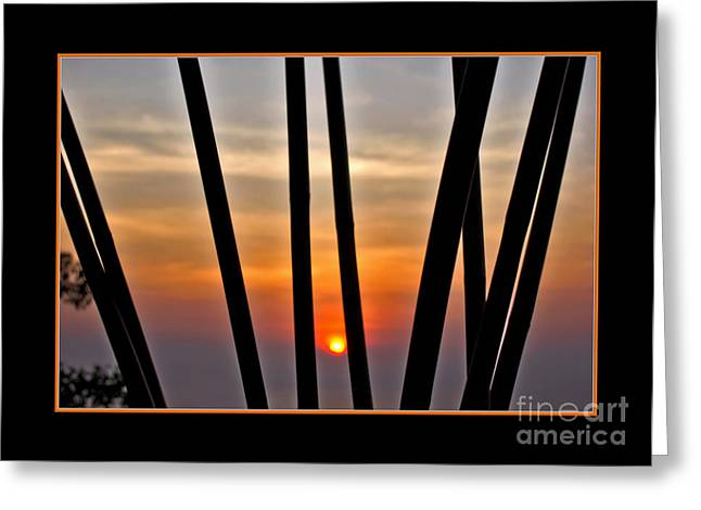 Sunset Abstract Greeting Cards - Bamboo Sunset - Black Frame Greeting Card by Kaye Menner