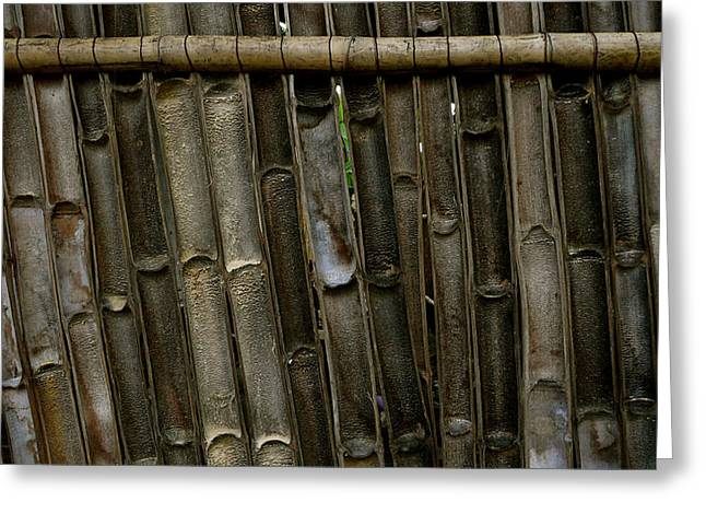 Bamboo Fence Greeting Cards - Bamboo Underside Wall Greeting Card by Eye Browses