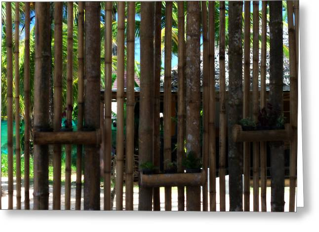 Bamboo Fence Greeting Cards - Bamboo View Greeting Card by Nomad Art And  Design
