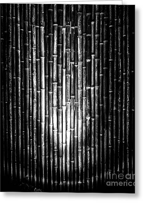 Bamboo Fence Greeting Cards - Bamboozled Greeting Card by James Aiken