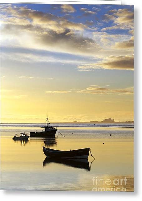 Farne Islands Greeting Cards - Bamburgh Castle from Lindisfarne Greeting Card by John Potter