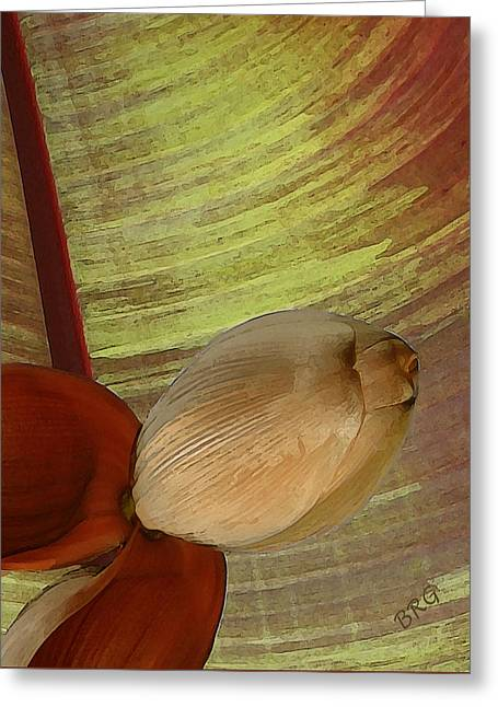 Earthtone Colored Art Greeting Cards - Banana Composition I Greeting Card by Ben and Raisa Gertsberg