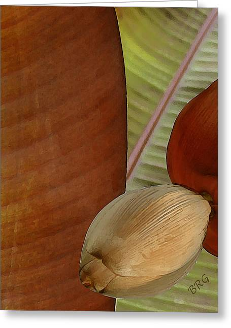 Earthtone Colored Art Greeting Cards - Banana Composition III Greeting Card by Ben and Raisa Gertsberg