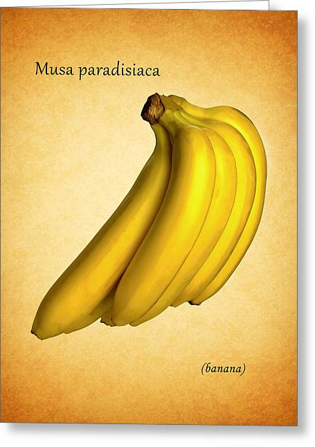 Banana Plants Greeting Cards - Banana Greeting Card by Mark Rogan