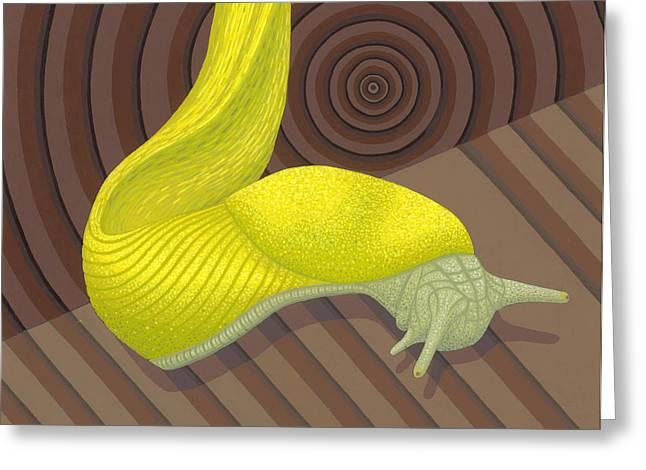 Banana Slug Greeting Card by Nathan Marcy