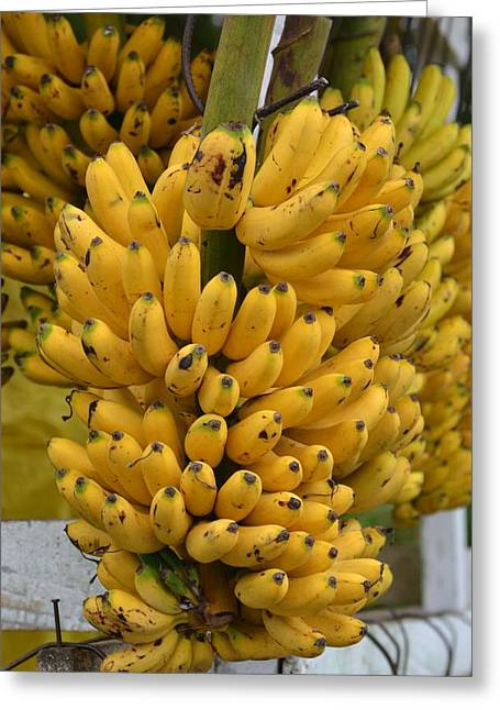 Local Food Greeting Cards - Banana Stand Greeting Card by Stephanie Guinn