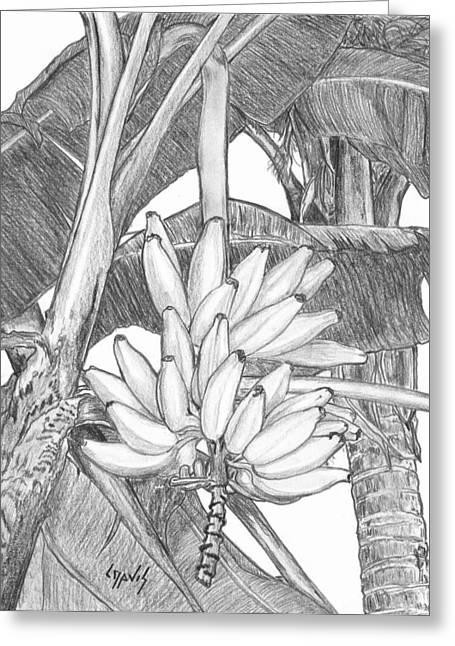 Bananas Greeting Card by Lew Davis