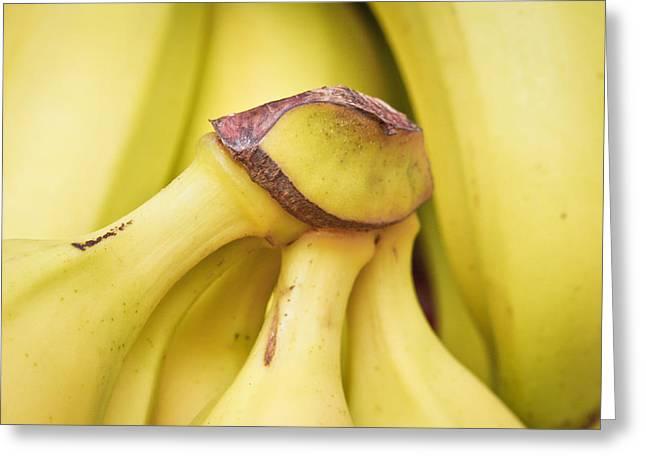Yellow Bananas Greeting Cards - Bananas Greeting Card by Tom Gowanlock