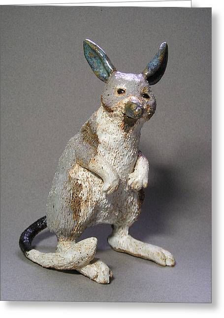 Desert Ceramics Greeting Cards - Bandicoot Greeting Card by Jeanette K