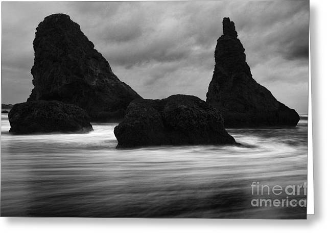 Canadian Photographer Greeting Cards - Bandon By The Sea Monochrome 1 Greeting Card by Bob Christopher