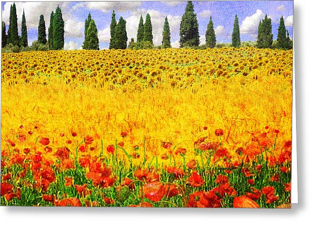 Yellow Sunflower Greeting Cards - Bands Of Color Provence France Greeting Card by R christopher Vest