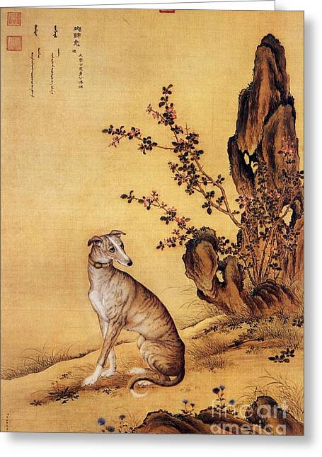 Greyhound Dog Greeting Cards - Banjinbiao - Chinese Royal Dog Greeting Card by Pg Reproductions