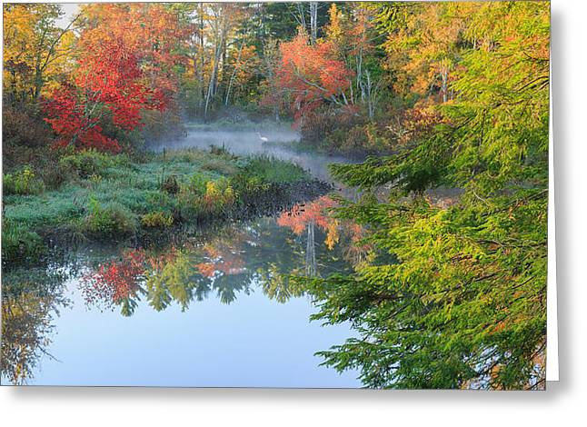 Reflections In River Greeting Cards - Bantam River Autumn Greeting Card by Bill  Wakeley