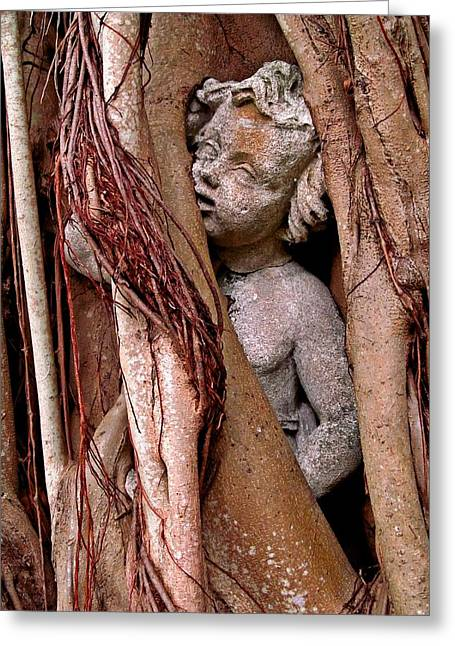 Garden Statuary Greeting Cards - Banyan Boy close up Greeting Card by Maria Huntley