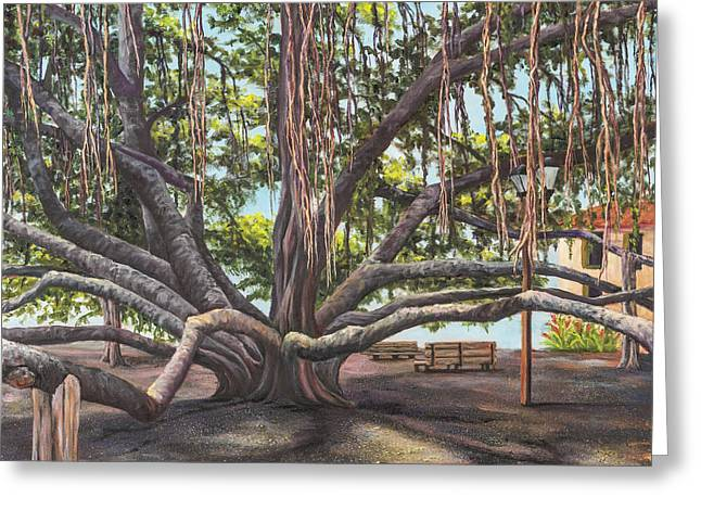 Park Benches Greeting Cards - Banyan Tree Lahaina Maui Greeting Card by Darice Machel McGuire