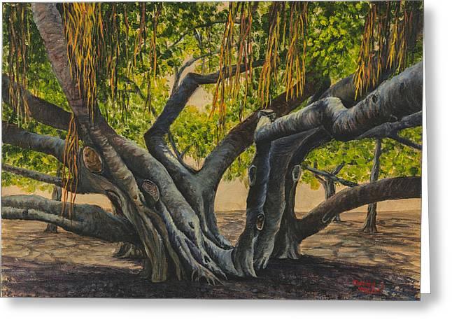 Lahaina Paintings Greeting Cards - Banyan Tree Maui Greeting Card by Darice Machel McGuire