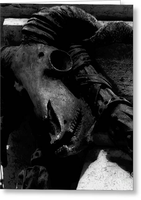 Baal Greeting Cards - Baphomets Visage - BW Greeting Card by James Aiken