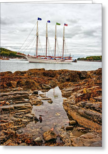 Best Sailing Photos Greeting Cards - Bar Harbor Greeting Card by Marcia Colelli
