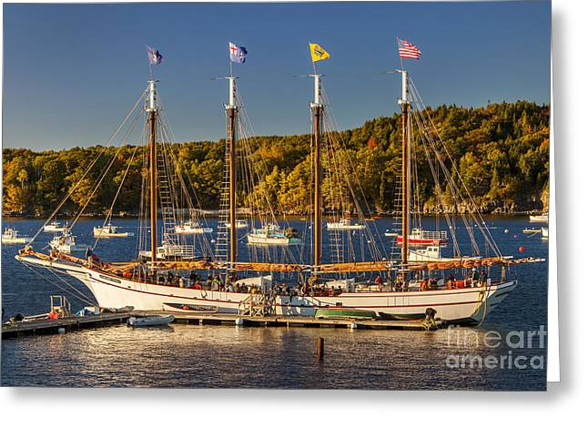 Bar Harbor Schooner Greeting Card by Brian Jannsen