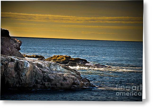 Maine Shore Greeting Cards - Bar Harbor Seascape Greeting Card by Gary Keesler