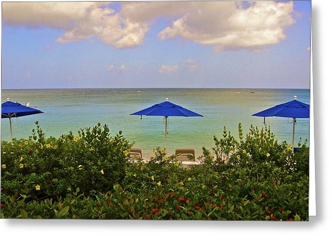 Vaction Greeting Cards - Barbados Ocean View  Greeting Card by Jennifer Lamanca Kaufman
