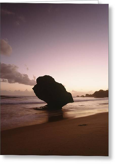 Surf Silhouette Greeting Cards - Barbados, Silhouette Of Strange Shaped Greeting Card by Ian Cumming