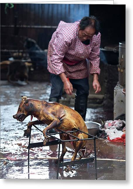 Barbecued Dog Carcass In A Chinese Market Greeting Card by Tony Camacho