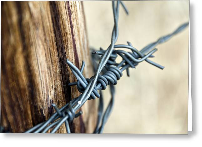 Barbed Wire Fences Mixed Media Greeting Cards - Barbed Greeting Card by Angelina Vick