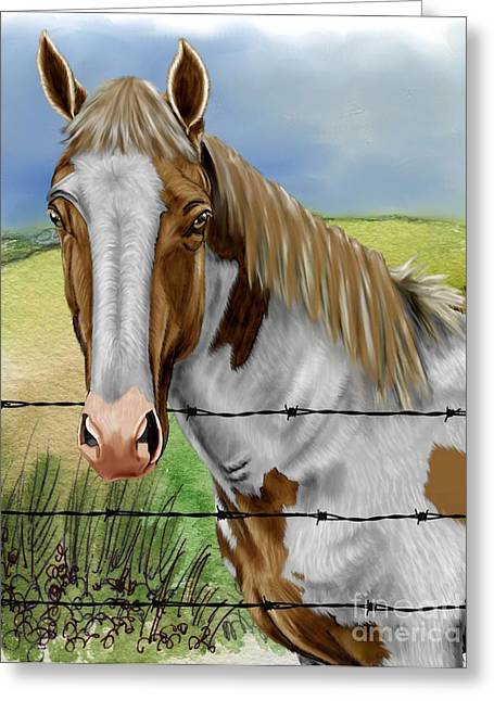 Barbed Wire Fences Mixed Media Greeting Cards - Barbed Wire Horse Greeting Card by Karen Sheltrown
