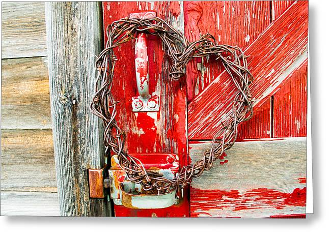 Wire Handle Greeting Cards - Barbed Wire Love Greeting Card by Miki  Finn