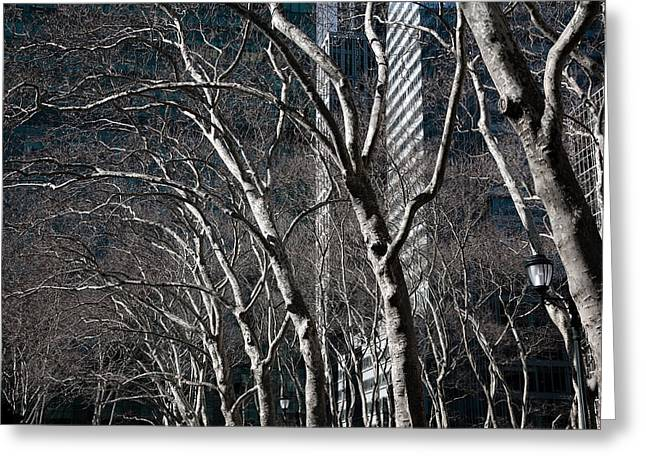 Bryant Park Greeting Cards - Bare Greeting Card by Joanna Madloch