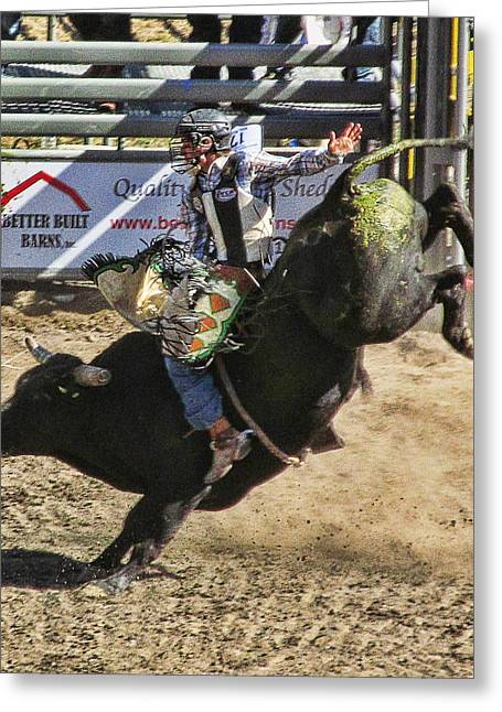 Ron Roberts Photography Greeting Cards - Bareback Bull riding Greeting Card by Ron Roberts