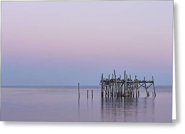 Cedar Key Greeting Cards - Barely Standing Greeting Card by Jon Glaser