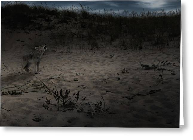 Moonscape Greeting Cards - Bark At The Moon Square Greeting Card by Bill  Wakeley