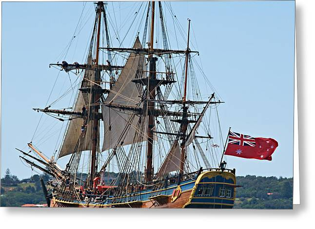 Royal Australian Navy Greeting Cards - Bark Endeavour- at the RAN Centenary Celebrations 2013. Greeting Card by Geoff Childs
