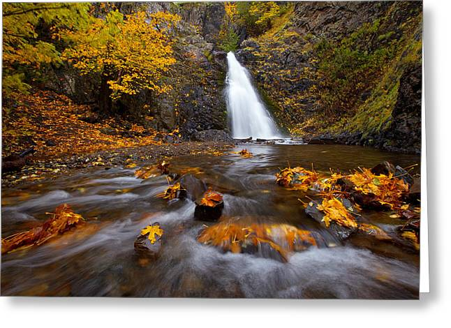 Fall Color Print Greeting Cards - Barking Dog Falls Greeting Card by Darren  White
