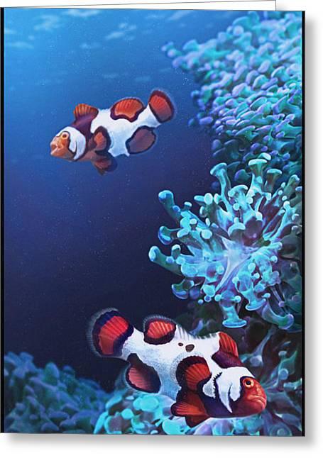Reef Fish Digital Art Greeting Cards - Barking Picassos Greeting Card by Javier Lazo
