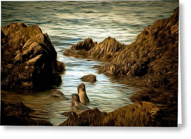 Elephant Seals Paintings Greeting Cards - Barking Seals Greeting Card by Barbara Snyder