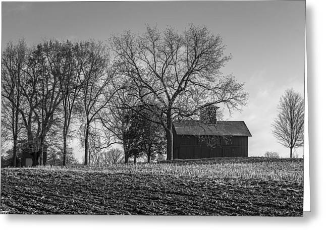 Classic Barn Greeting Cards - Barn and one lonely tree Greeting Card by John McGraw