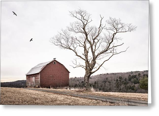 Old Country Roads Greeting Cards - barn and tree - New York State Greeting Card by Gary Heller