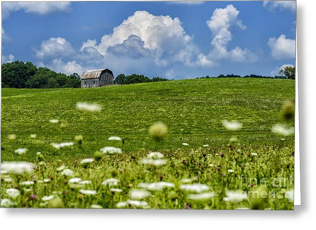 Nicholas Greeting Cards - Barn Clouds and Pasture Greeting Card by Thomas R Fletcher