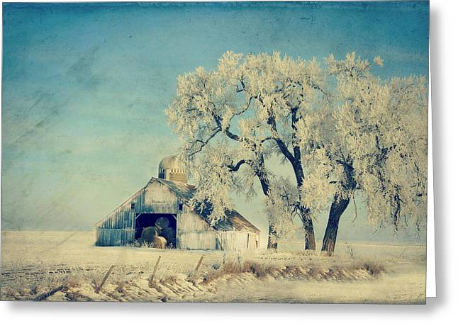 Country Shed Greeting Cards - Barn Frosty Trees Greeting Card by Julie Hamilton