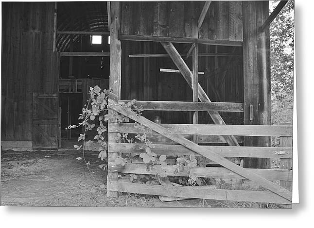 Barn In Woods Photographs Greeting Cards - Barn Gate Greeting Card by Rachel Cash