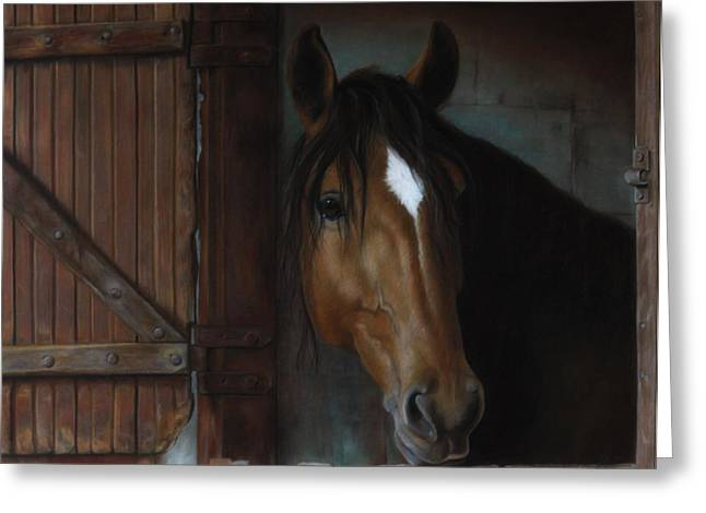 Drawings Of Barns Greeting Cards - Barn Horse Greeting Card by Julie Olsen